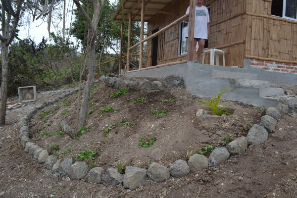 Planting area in front of casita